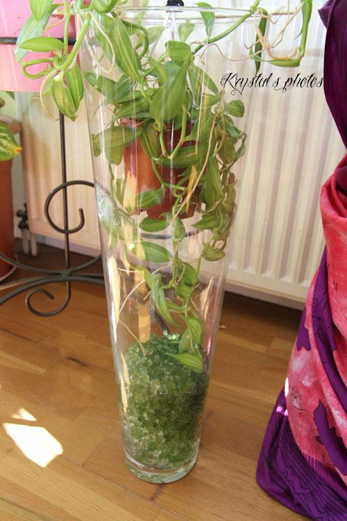 Elfedekrystal - Grand verre a pied pour decoration ...